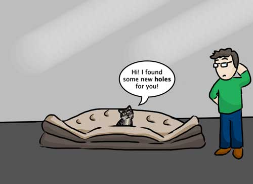 dog and cat-proof air mattress illustration