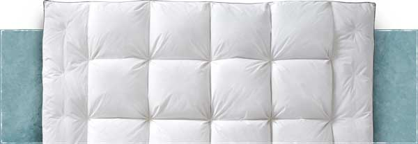 down feather mattress pad comforter