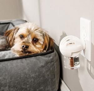 adaptil plugged in