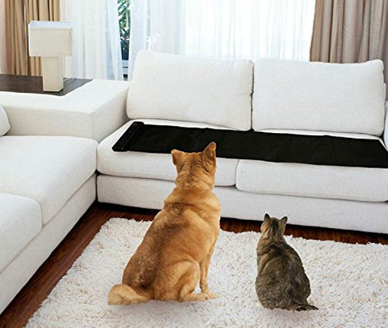 dog and cat in front of Sofa Scram sonic scat pad