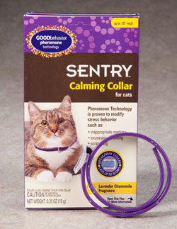 sentry cat calming collar