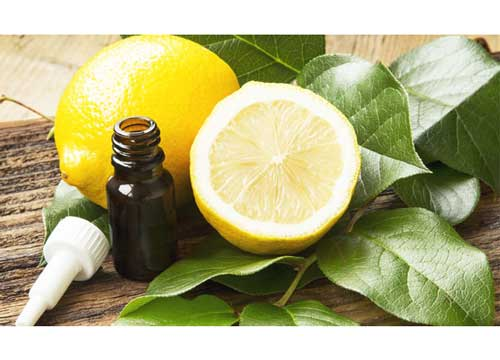 Lemon Tree essential Oil for deep sleep