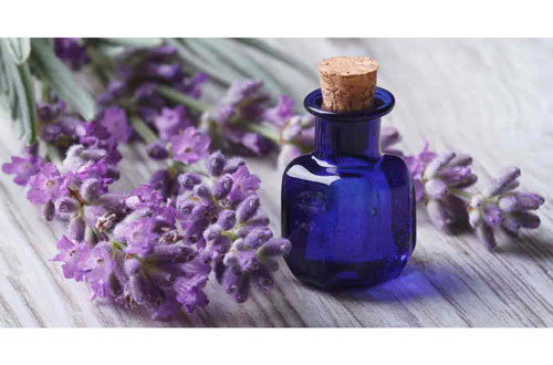 lavender essential oil blue bottle