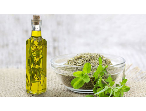 marjoram essential oil for sleep apnea