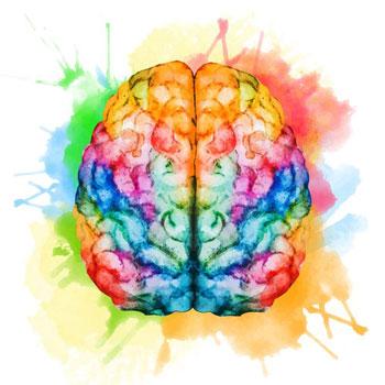 brain image concept