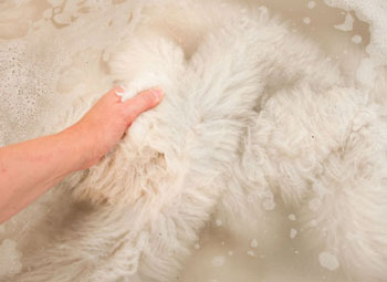 hand washing wool